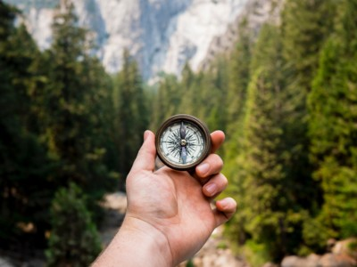 compass and trees