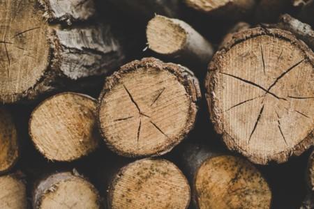 logs closeup
